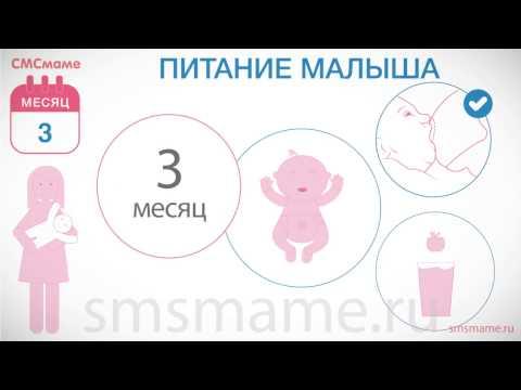 Сколиоз у девочки 12 лет лечение