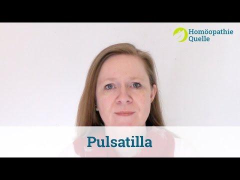 Pulsatilla Homöopathie: Anwendung und Wirkung