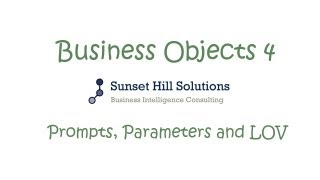 Business Objects 4x Information Design Tool - Prompts, Parameters and LOV