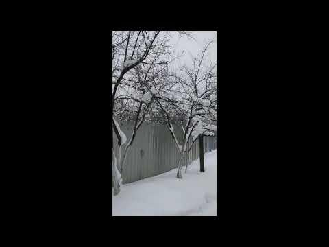 Земельный #участок под #дом есть #свет #газ #деревня #Стрелино #Солнечногорск #АэНБИ #недвижимость