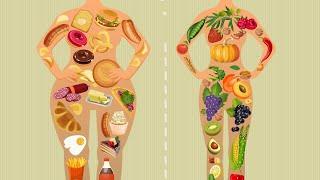 Здоровое питание — XXXlX