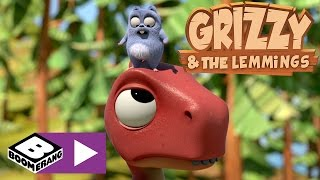 Grizzy I Lemingi | Akcja T-Rex | Boomerang