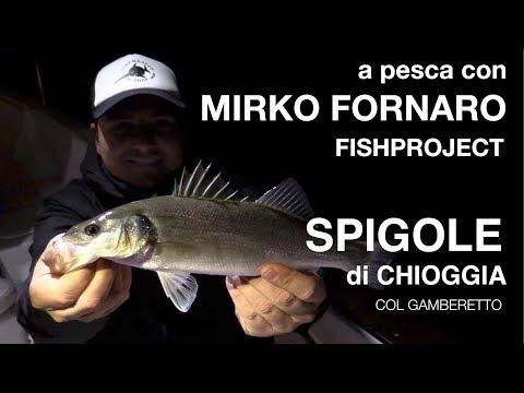 Il sogno che pesca per prendere il pesce alla donna