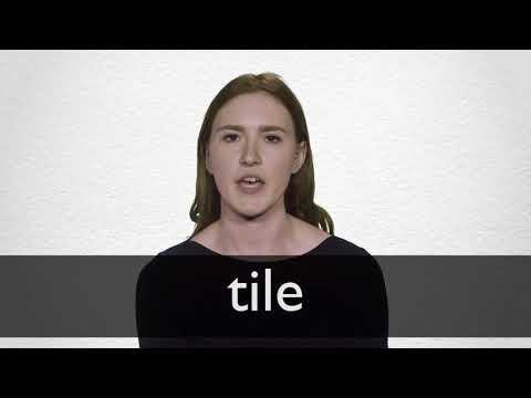 German Translation Of Tile Collins