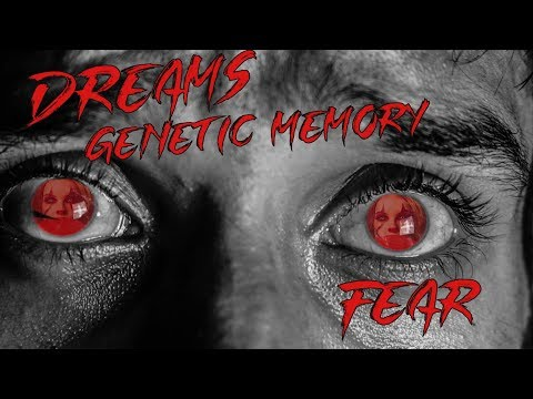 On Dreams, Genetic Memory, And Fear