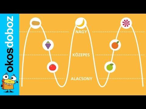 A fogyás fő módjai