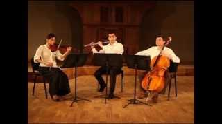 Claude Debussy- La fille aux cheveux de lin