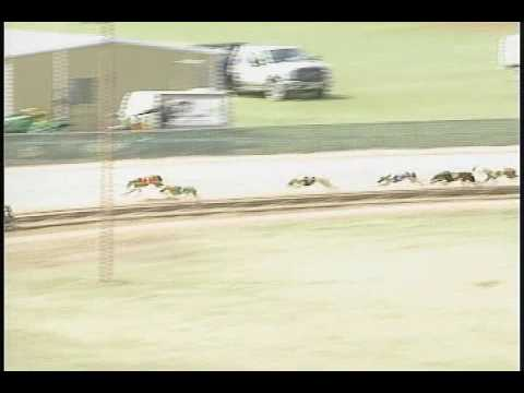 Race 44