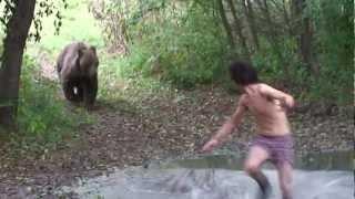 Medvetámadás Szögligeten