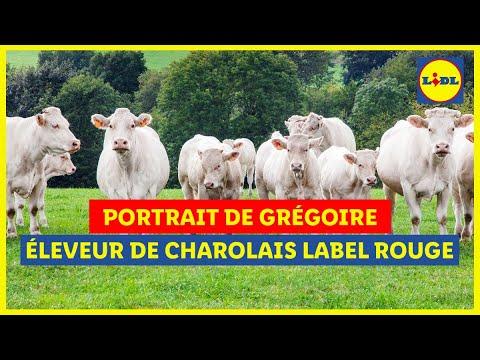 Musique publicité Lidl Portrait de Grégoire, éleveur de charolais Label Rouge    Juillet 2021