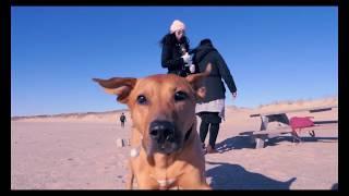 Sia - Saved My Life (Music Video)