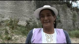 preview picture of video 'Agricultura en Cuenca - Mercado mayorista el arenal'