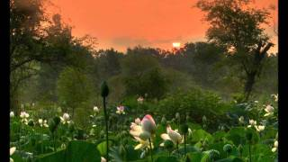 Art Garfunkel, Diana Krall - Morning Has Broken (audio)