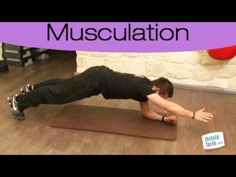Les muscles transversaux de la main