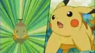 Grotle  - (Pokémon) - Pokemon AMV: Turtwig, Grotle and Torterra Tribute