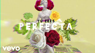 Luis Fonsi, Farruko - Perfecta (Lyric Video)