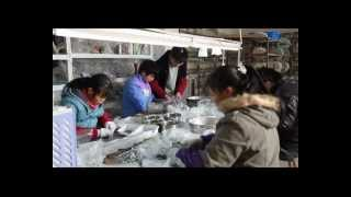 preview picture of video 'Yiwu Vnistar Jewelry Factory - European Beads and Fashion Jewelry Supplier'