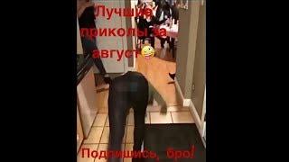 Смешные Видео 2018 😂 Подборка Самых Лучших Приколов За Август 2018⚡# 1