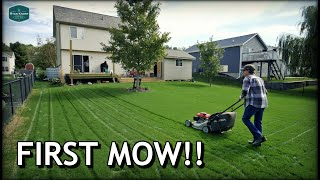 When To MOW, WATER, FERTILIZE New Lawns // FIRST MOW on Tall Fescue