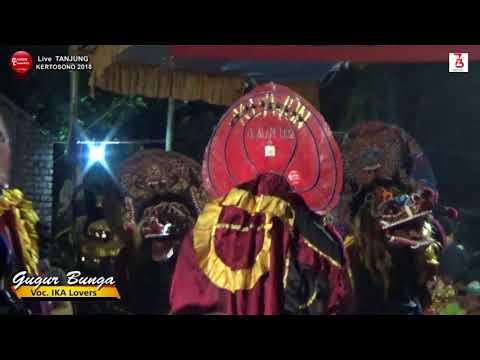 Lagu perjuangan gugur bunga voc ika lovers   rogo samboyo putro live tanjung 2018
