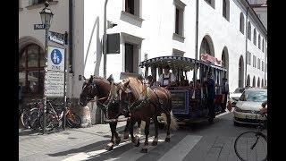 Pferdetrambahn beim Stadtgründungsfest 2018