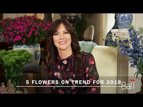 5 Flower Trends for 2018 via Farm Star Living thumbnail