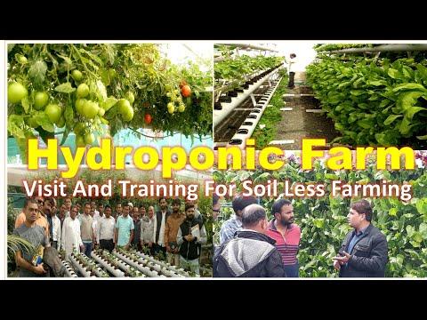 Hydroponic Training - YouTube
