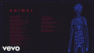 AURORA   Animal (Audio)