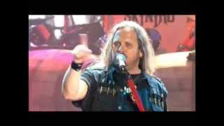 Lynyrd Skynyrd - Red White and Blue (Live)