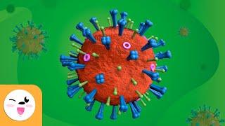 What is a virus? - Viruses for children -  Science for Kids