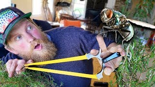 Fly Hunting With A Slingshot GZK  G-Shot (Trick Shot Tuesday Ep. #7)