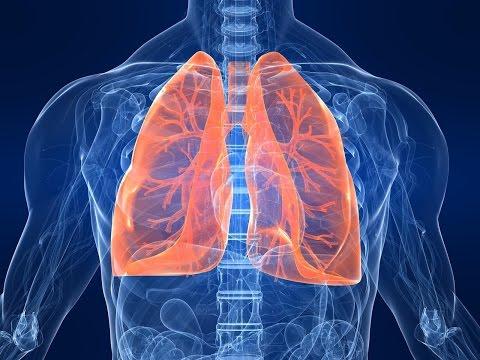 Нет-одышке! Нет-кашлю! Упражнения при заболеваниях органов дыхания