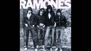 Fabulous Disasters Ramones Tribute