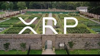 Ripple And XRP Building Bridges To Connect Walled Gardens