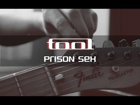 Tool - Prison Sex Guitar Cover