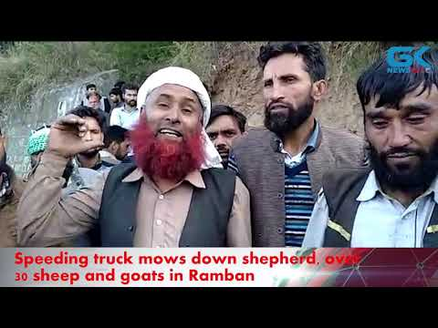 Speeding truck mows down shepherd, over 30 sheep and goats in Ramban