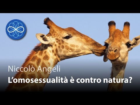 Video sesso raccolta