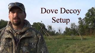 Dove Decoy Setup