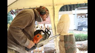 CHAINSAW CARVING AN OWL FROM START TO FINISH   CHAINSAW CARVINGS BY MARK TAYLOR