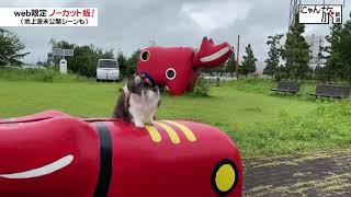 Vol.123「にゃん旅鉄道」お気に入りの公園だにゃ!