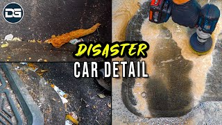 Deep Cleaning A FILTHY DIRTY Car! | Total Disaster Detail And Satisfying Car Detailing!