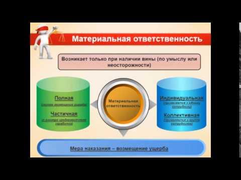 Ответственность руководителя, директора, бухгалтера, предпринимателя, организаций 1