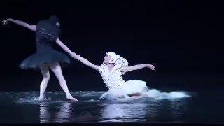 A Swan Lake d'Alexander Ekman interprété par le Ballet National de Norvège