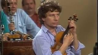 Vlasta Redl + AG Flek a J  Pavlica s Hradišťanem 1991(Muzicírování)
