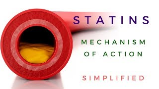 Statins Mechanism Of Action *Animated*