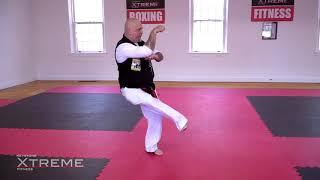 Kata 09.3 – Brown Belt – Tekki Shodan – Practice