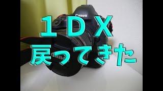 EOS-1DXが修理から戻ってきた!