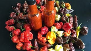 Making Hot Sauce Using The Hottest Peppers