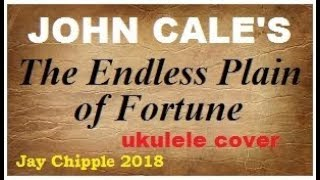John Cale cover - The Endless Plain of Fortune