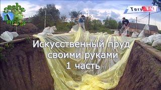Какой пруд выкопать для разведения рыбы